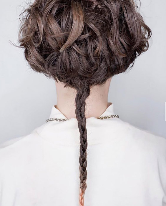 Layered Haircut with Braided Tail