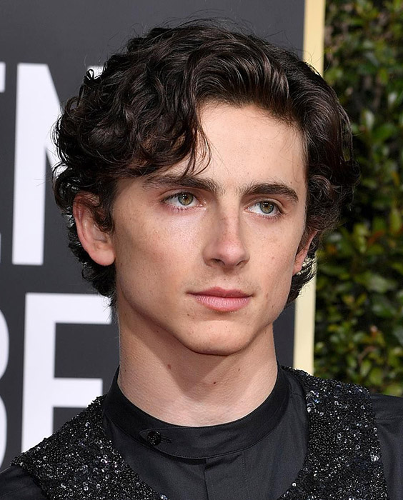 Timothée Chalamet Eboy Haircut